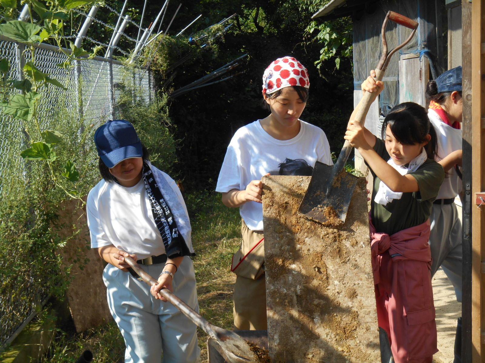 http://www.shimanet.ed.jp/hamadayougo/news/DSCN8471.JPG