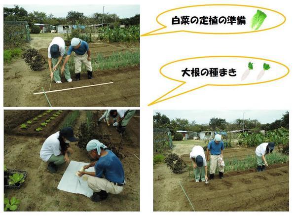 園芸班畑手伝い②.jpg