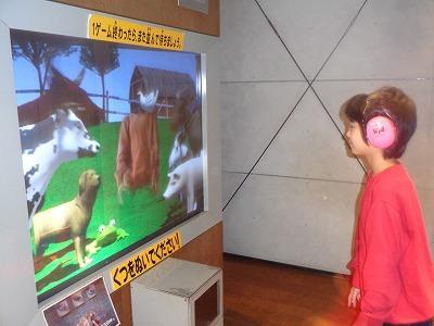 科学館で映像を見ながら身体を動かす児童