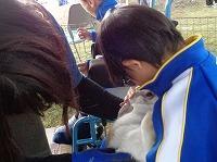 ウサギを抱く児童