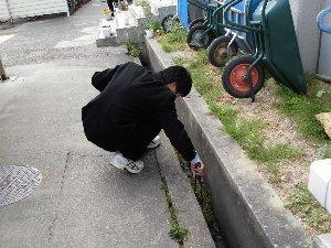 プランターに花の苗を植えをする様子